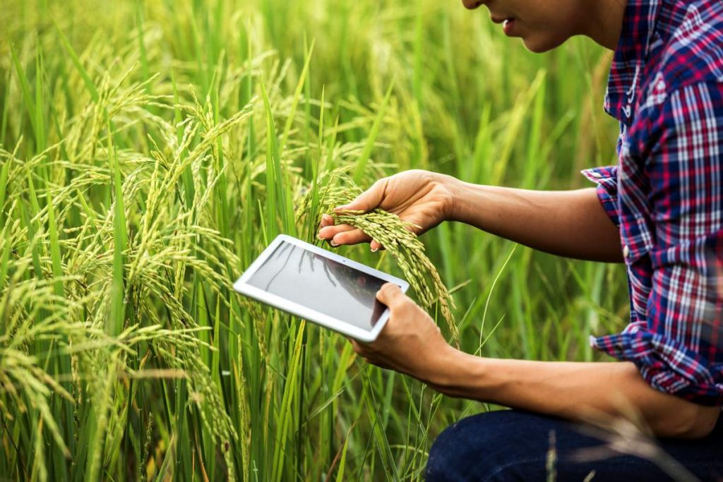 Agriculture technology to Produce Crops, New Technology
